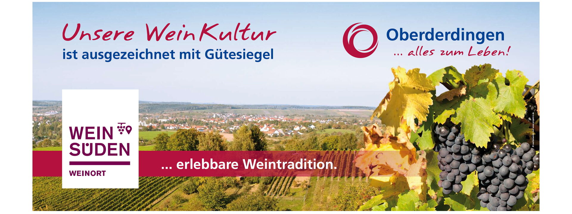 Weinregion mit Weintradition in Oberderdingen